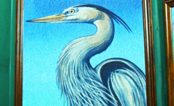 Endangered Great Blue Heron and Egrets