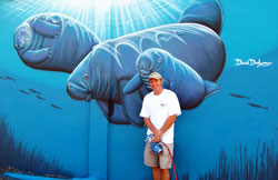 Endangered Manatees of Ft Pierce, FL
